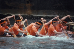 dragon-boat-racers